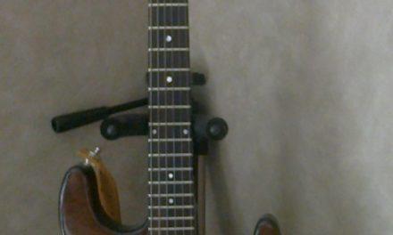 A la découverte de la guitare