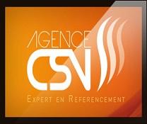 Alexandre Chombeau, un leader exemplaire aux commandes de l'Agence CSV.
