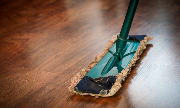 Une entreprise de nettoyage : des offres multiples