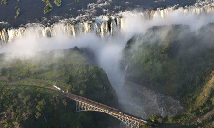 Pourquoi les touristes aiment-ils partir en Afrique du Sud ?