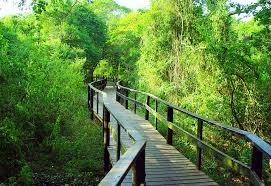 Quelques zones de conservation à découvrir en Afrique