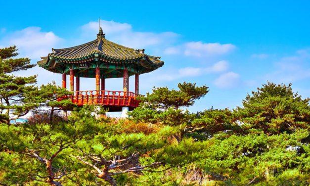 Vivre des moments distrayants durant un voyage en Corée du Sud