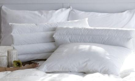 L'oreiller professionnel pour le secteur de l'hébergement