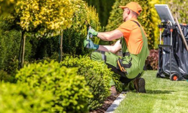 Réussir l'aménagement du jardin