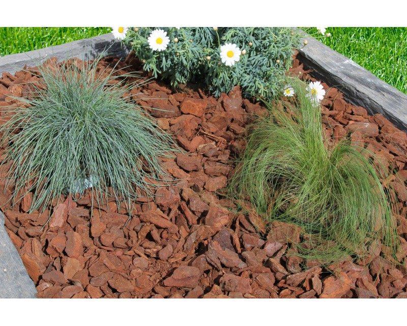Pailler son jardin : Pourquoi et comment procéder ?