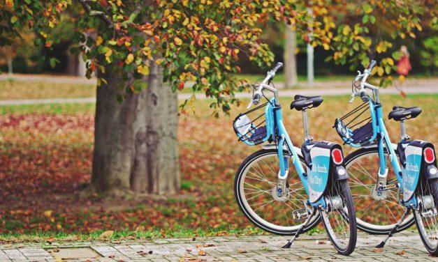 Les solutions optimales pour assurer le transport de son vélo en voiture