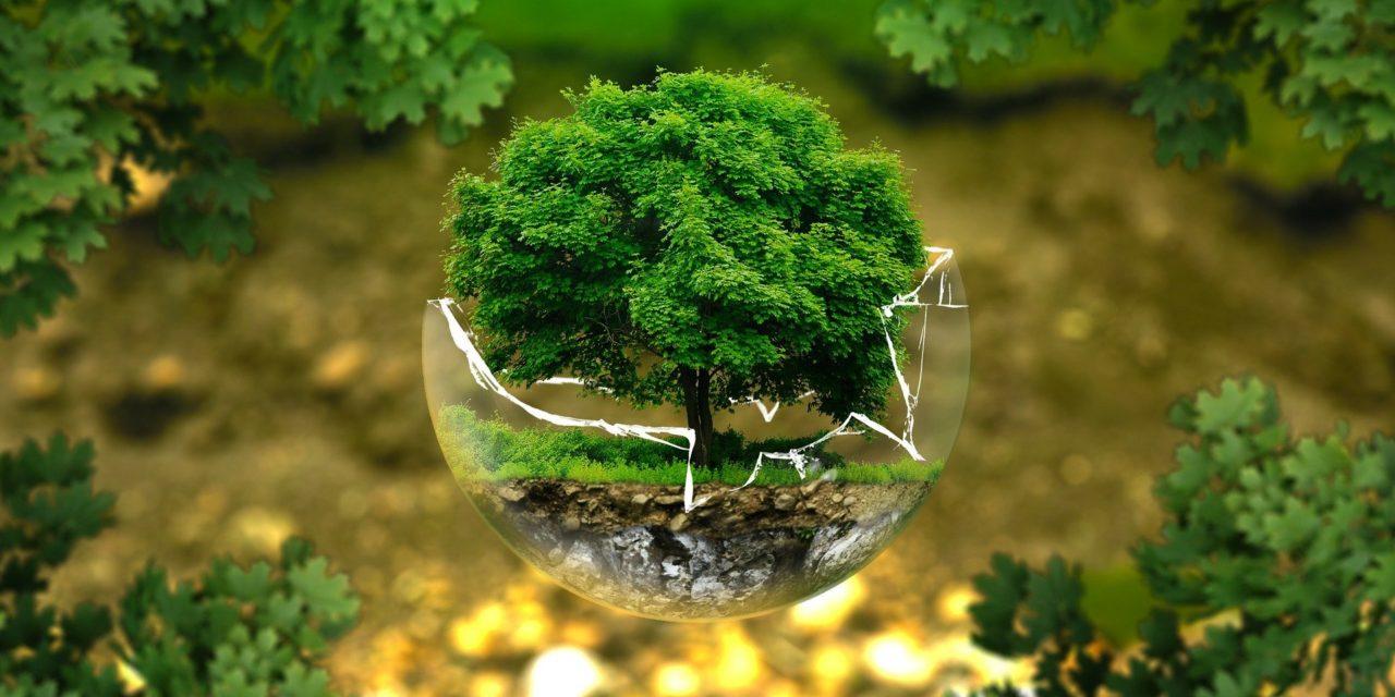Moulage Injection Plastique et Environnement