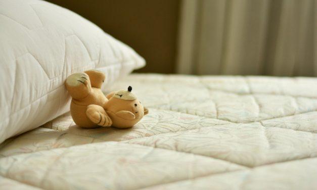 Punaises de lit : Tous nos conseils pour les éradiquer